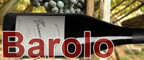 Weinbauregion Piemont Barolo Wein