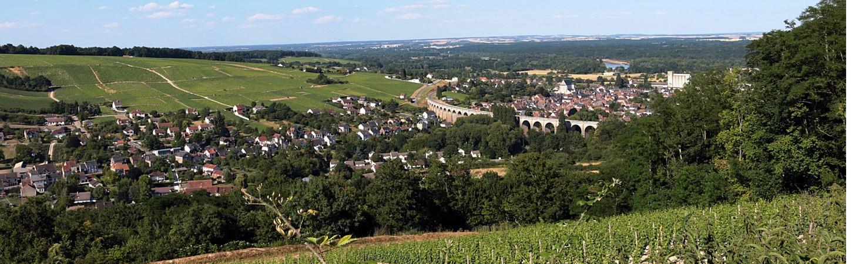 Weinanbau in Sancerre