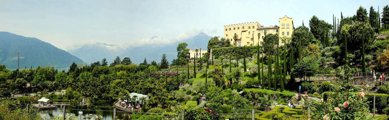Weinanbau Italien