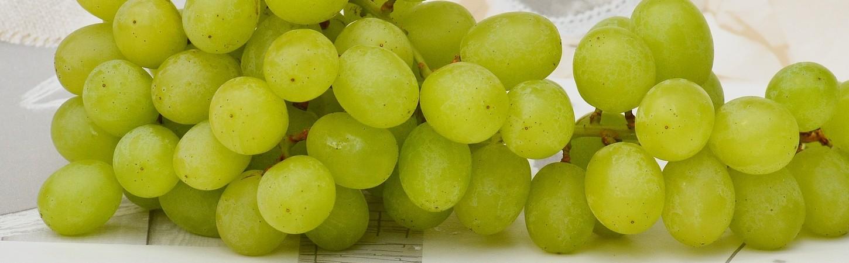 Rebsorten weißer Bordeaux