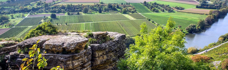 Weine Baden Württemberg